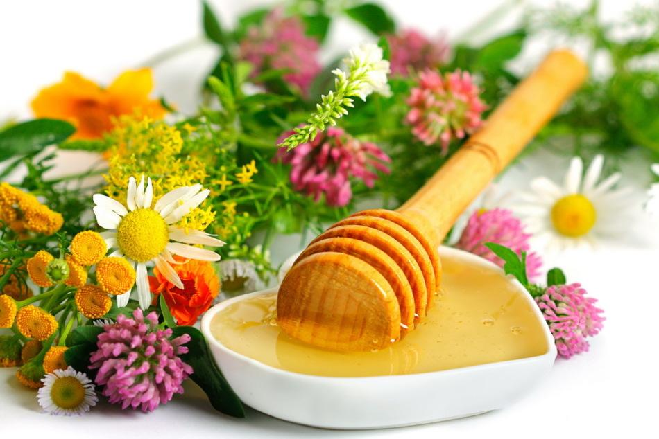 Цветочный мед пользуется большой популярностью, но важно помнить о том, что не все цветы в действительности его дают