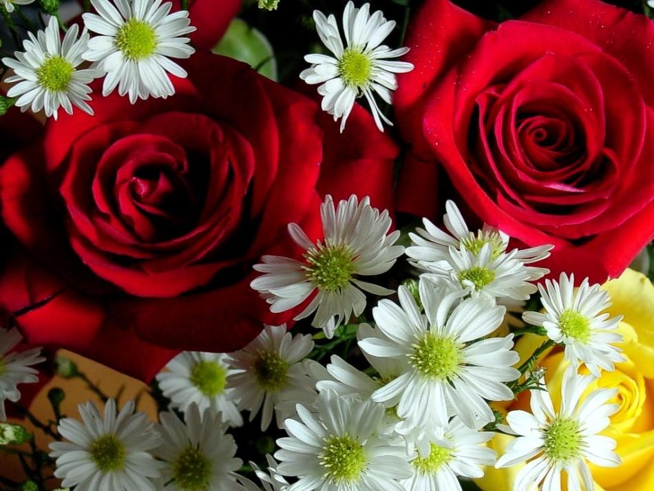 Благоприятные дни для посева цветов по лунному календарю