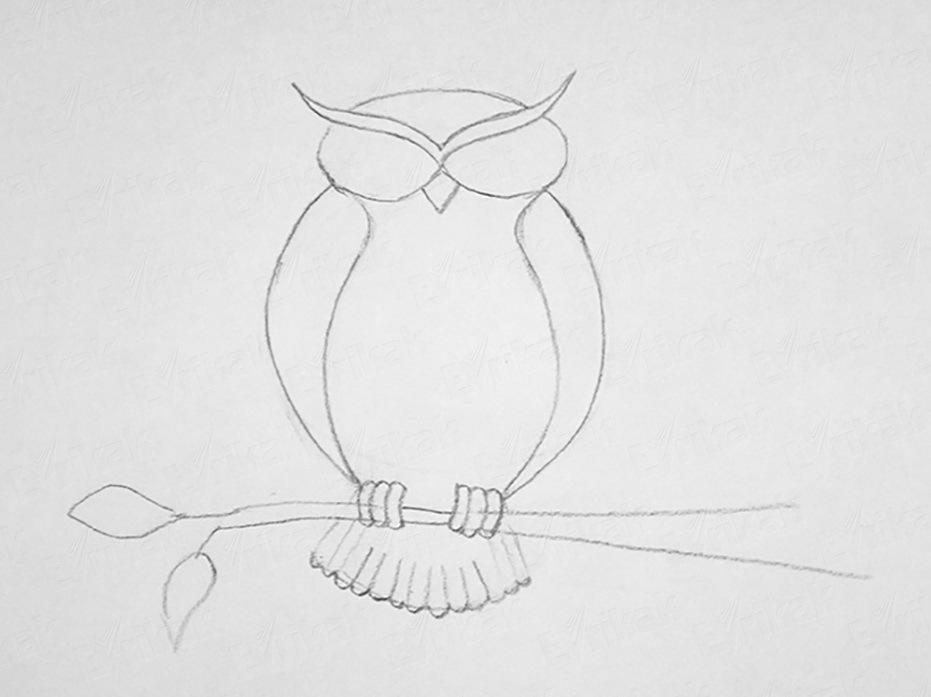 dobavlyaem-klyuvik-i-nabrasivaem-osnovnie-linii-dlya-dorisovki-glaz Как рисовать сову карандашом поэтапно для начинающих и детей? Как рисовать по клеточкам сову, красками?
