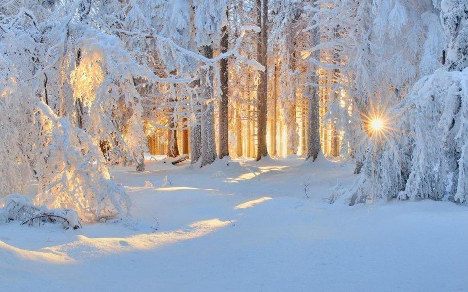 Снежная зима по народным приметам