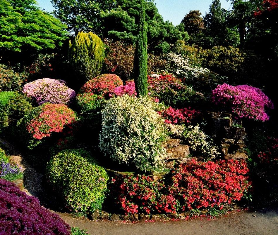 Красивая цветочная альпийская горка