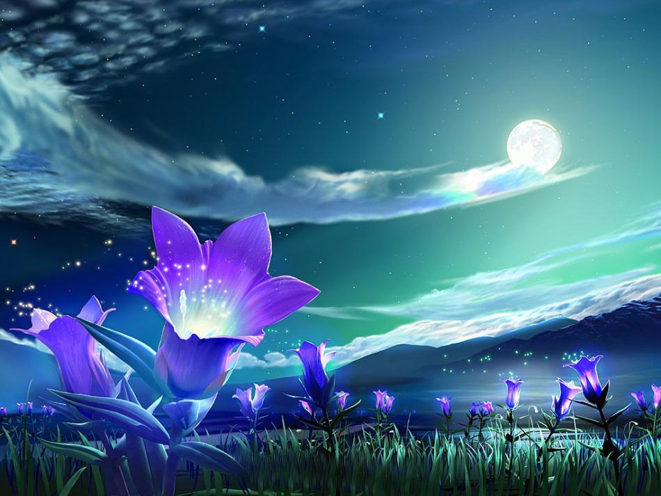 Благоприятные дни для посева цветов по лунному календарю в январе