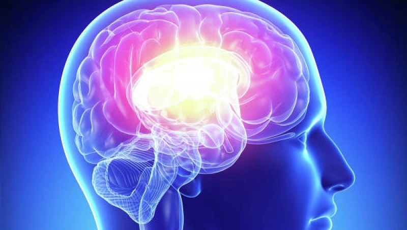 Развитие левого полушария мозга
