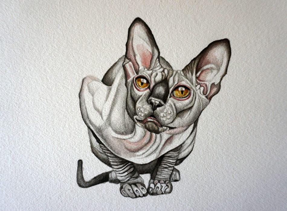 Эскиз тату - кошки-сфинкс