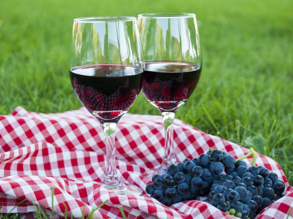 Пара бокалов домашнего вина и гроздь винограда изабелла