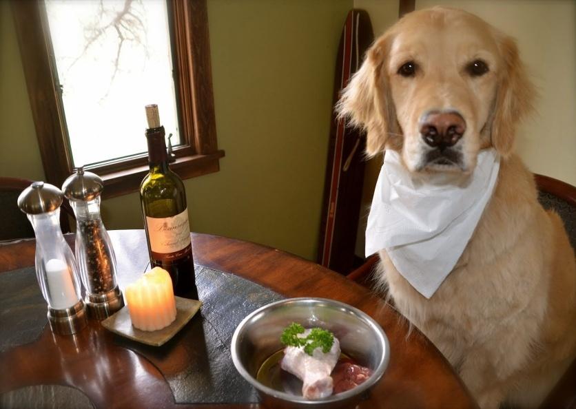 Обед для собаки