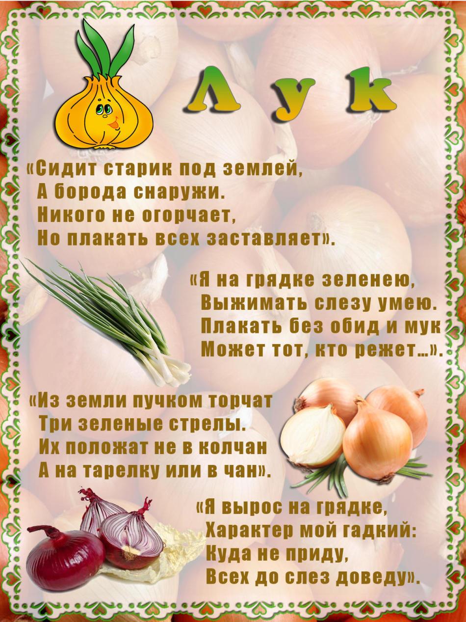Загадки об овощах и фруктах в картинках