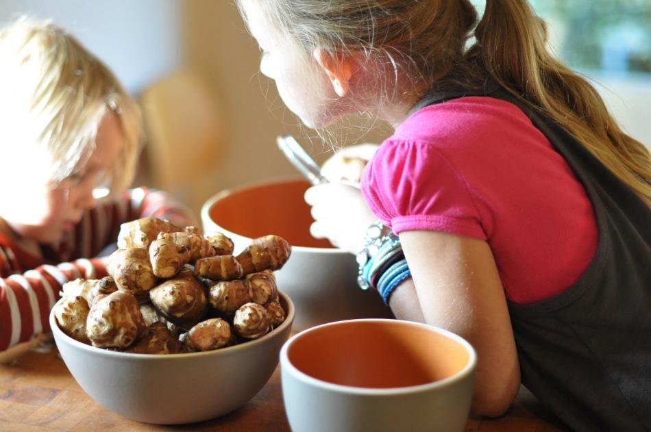 Детям топинамбур можно давать вместо картошки