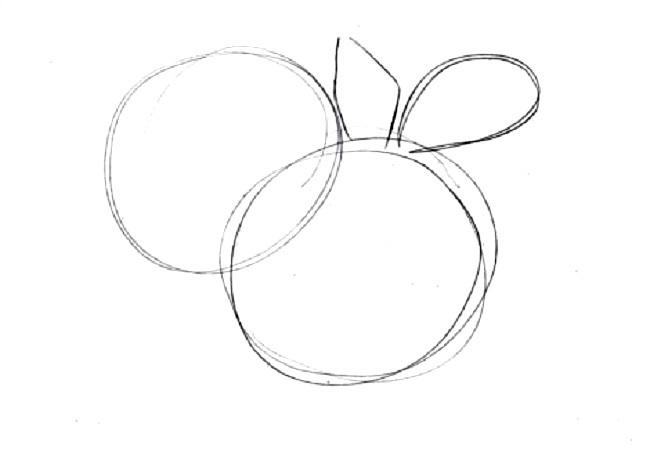 Как нарисовать букет хризантем: создание наброска