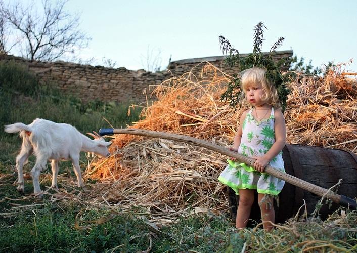 Деревня подарит детям свежий и оздоровительный воздух и крепкий сон
