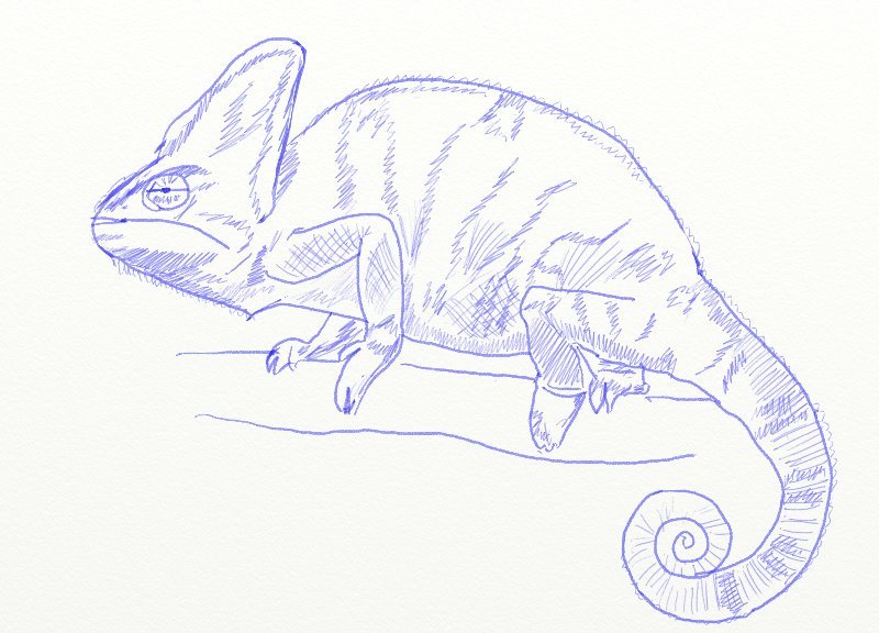 картинки как рисовать хамелеона рестораном