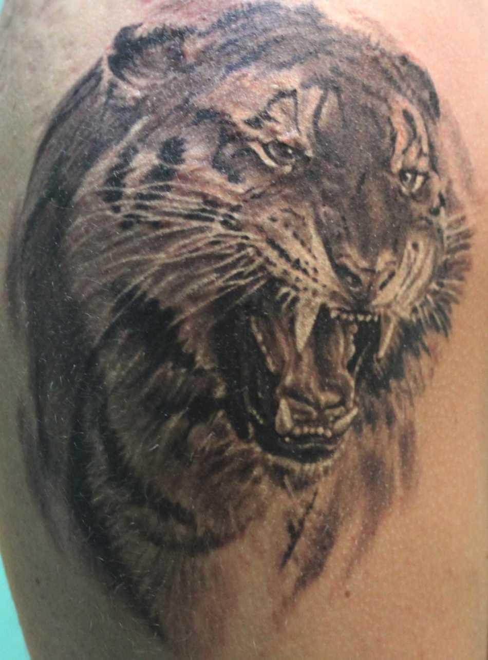 Тигр, который демонстрирует оскал, встречается и в тюремной татуировке