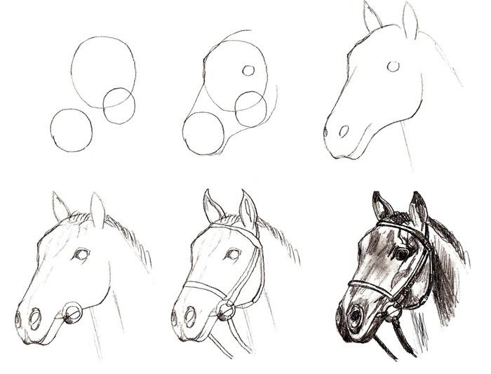 Простые картинки для срисовки карандашом поэтапно