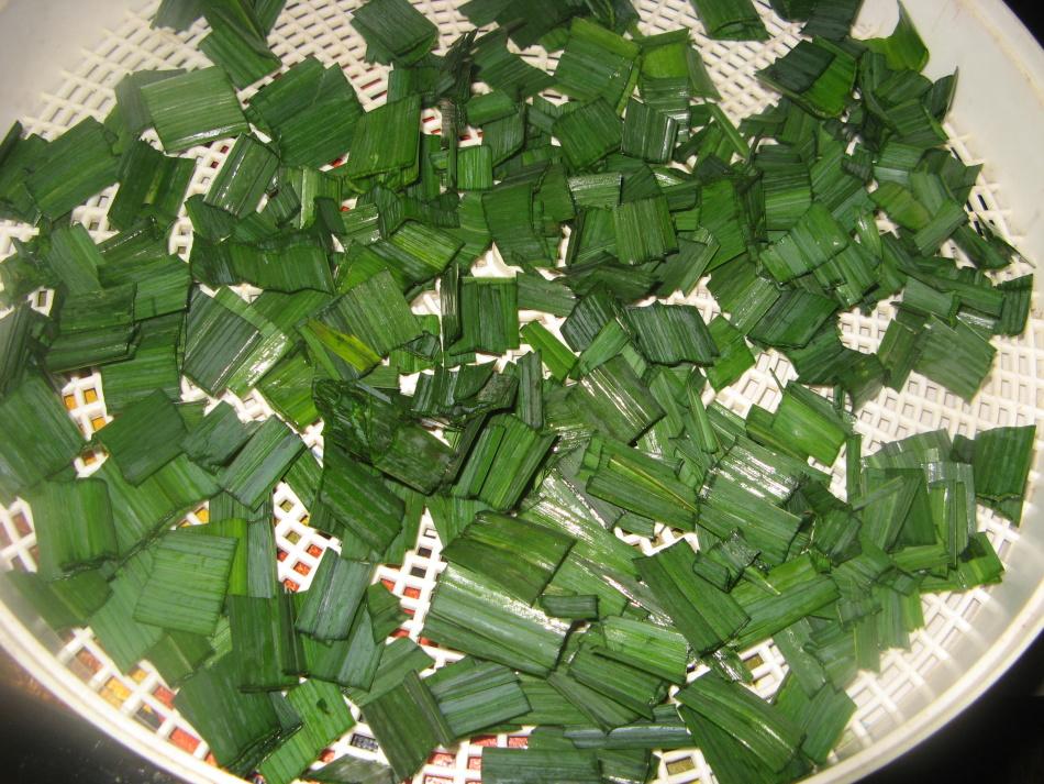 Измельченную зелень помещают на слой марли и накрывают бумагой