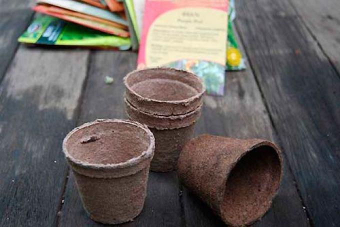 Использование торфяных горшочков для выращивания рассады огурцов