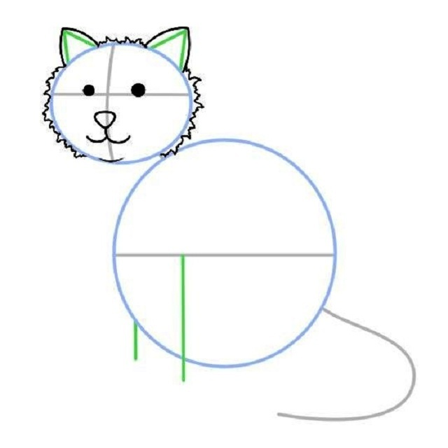 Как нарисовать сидящую кошку: набросок — детали головы
