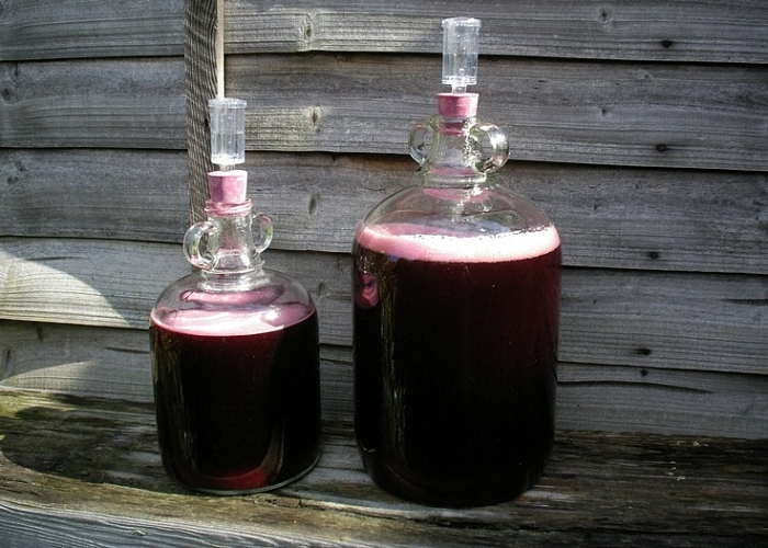 Вино из черноплодной рябины под гидрозатвором