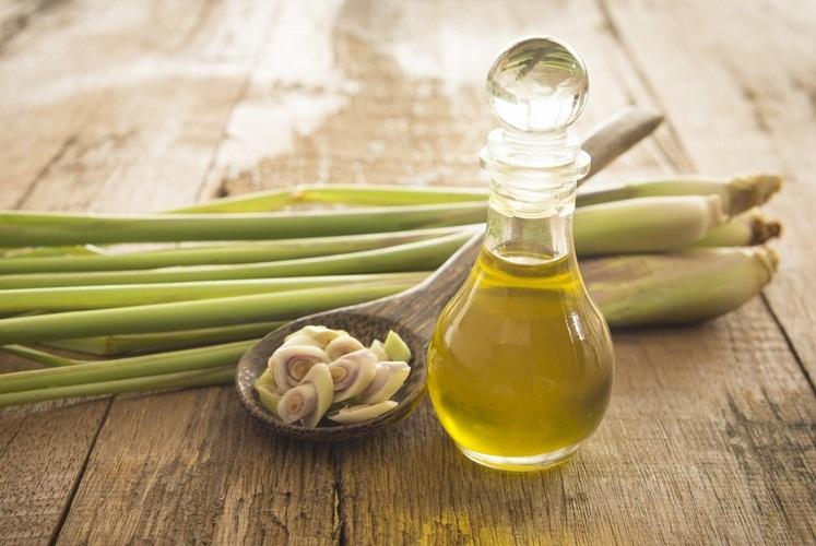 Лемонграссовое масло не только от комаров убережет, но и здоровье повысит