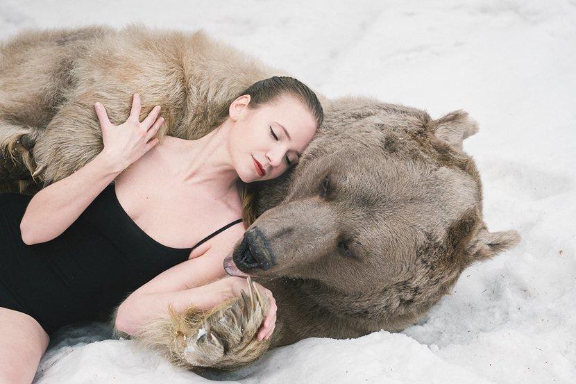 Спящий медведь в сновидении может символизировать возрождение как позитивной, так и негативной энергетики