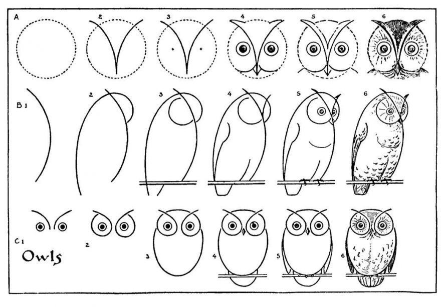 Картинки сова поэтапно