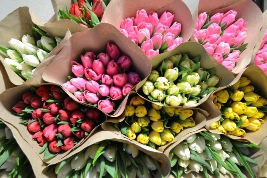 hranenie-srezannih-tyulpanov Выращивание тюльпанов к 8 марта