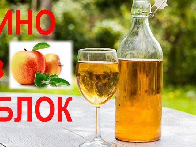 Как сделать вино из яблок 704