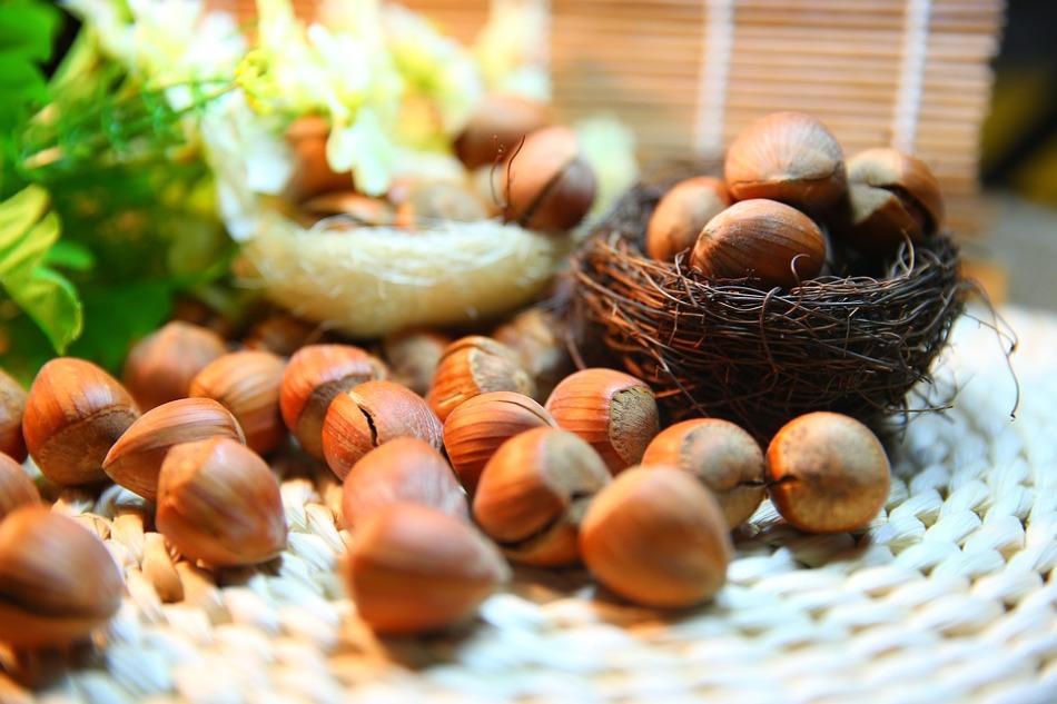Лесной орех этот богатый источник витамина e и фолиевой кислоты