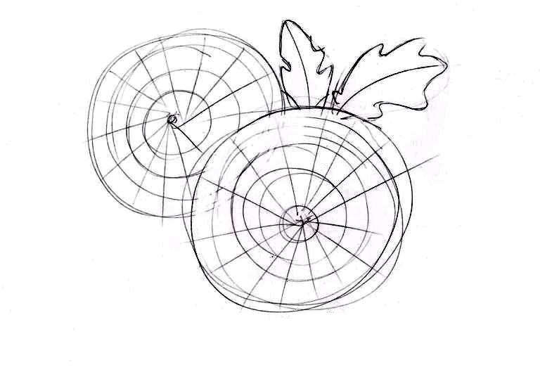 Как нарисовать букет хризантем: готовый набросок