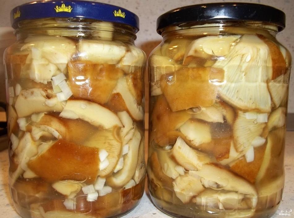Сколько варить зеленки грибы