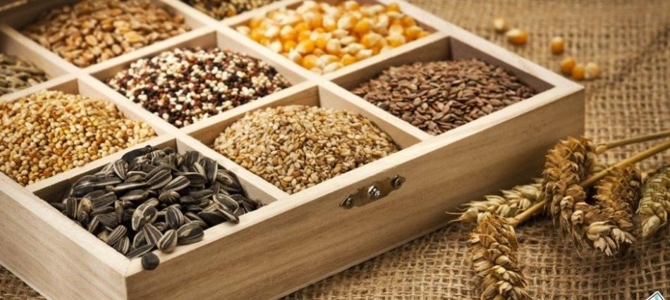 Семена разложены по отсекам в деревянной коробке для хранения