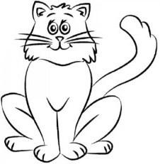 navedite-osnovnie-linii Как нарисовать котенка карандашом поэтапно для начинающих и детей? Как нарисовать котенка аниме с милыми глазками, мордочку котенка?