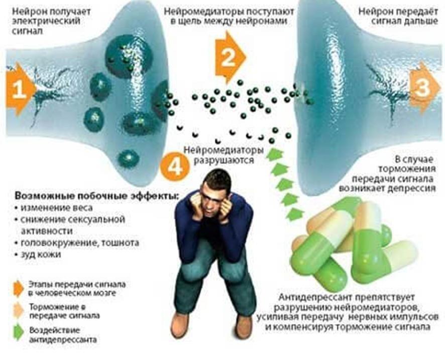 Схема воздействия алкоголя и антидепрессантов на человека