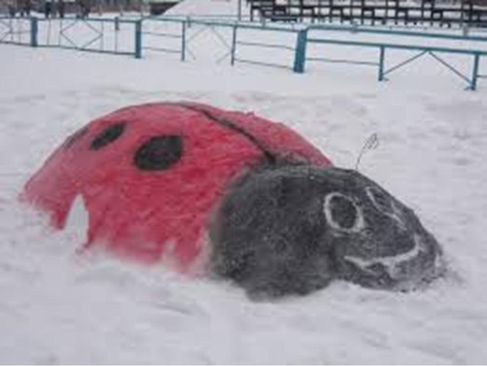Большая снежная божья коровка