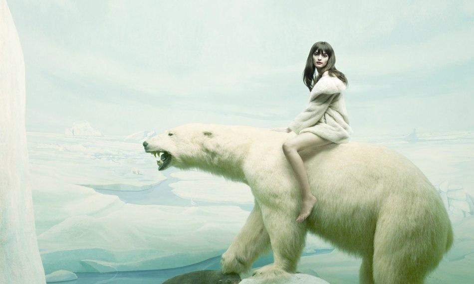 Белый медведь в сновидениях пророчит светлое будущее