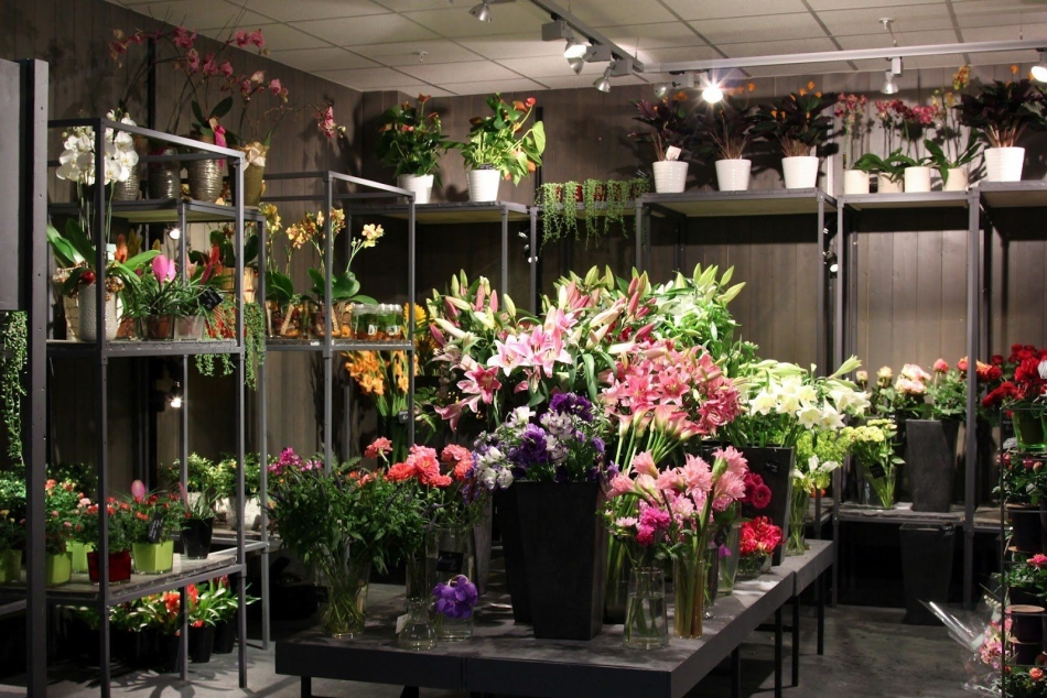 Магазин флористики