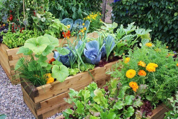 Обереги помогают при посадке овощей, чтобы в огороде все хорошо росло