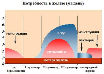 Питание беременной при низком гемоглобине, норма железа при беременности