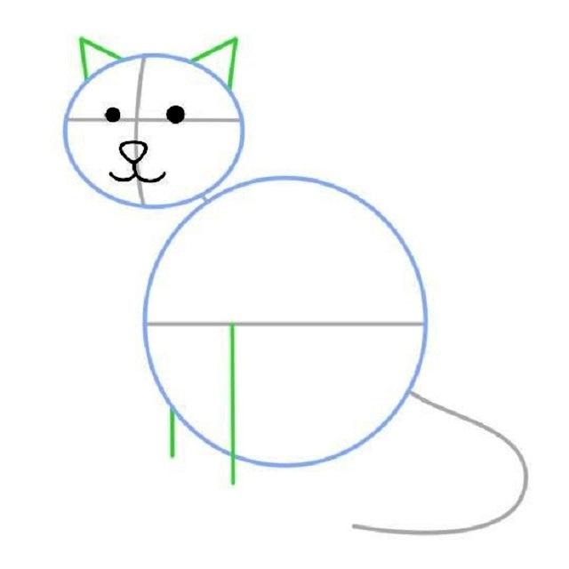 Как нарисовать сидящую кошку: набросок — детали морды