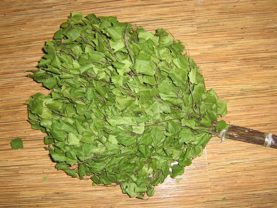 Веник из березовых листьев - отличная идея для тех, кто хочет получить в бане максимум пользы