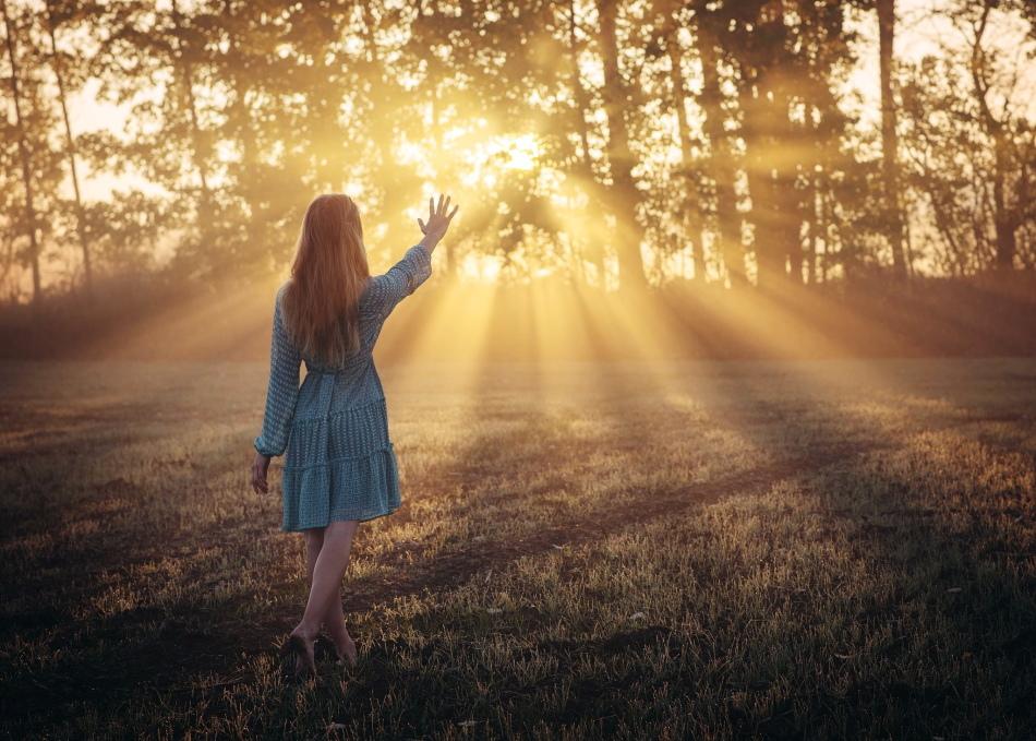 Бесцельно бродящий по лесу во сне человек не уверен в себе и своих действиях наяву.
