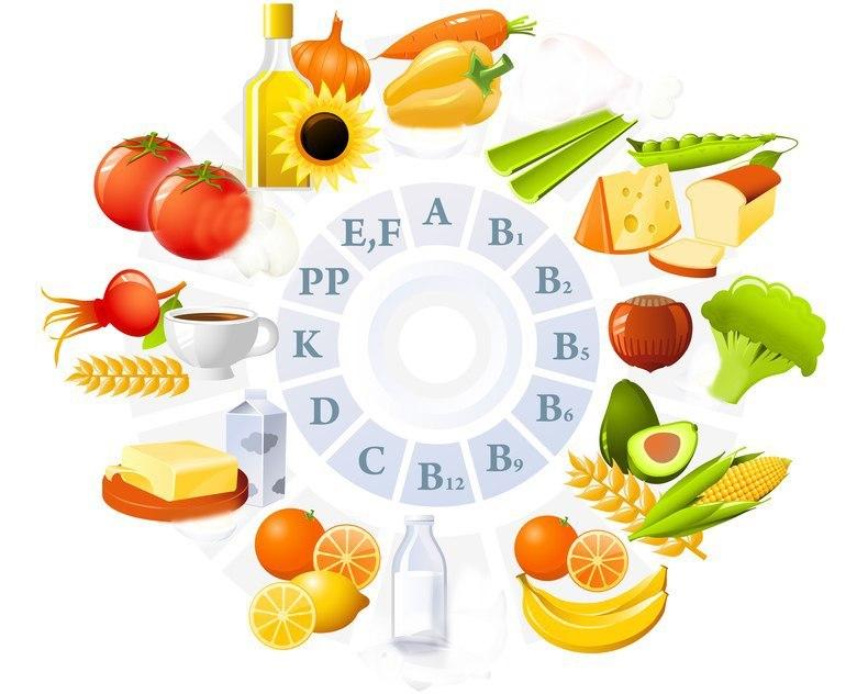 Все необходимые витамины человек получает с растительной пищи