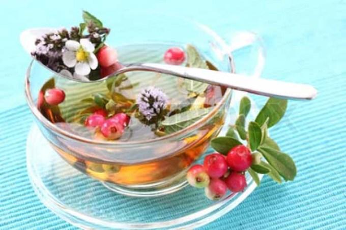 Чай от простуды готовиться из брусники и лекарственных трав.