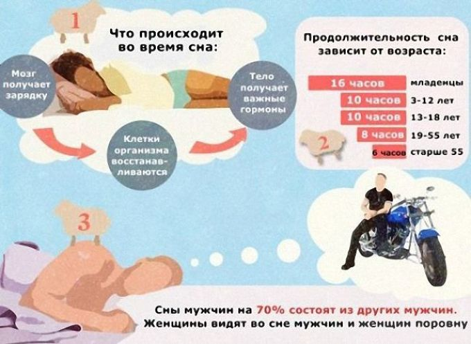 Интересные факты о сне человека