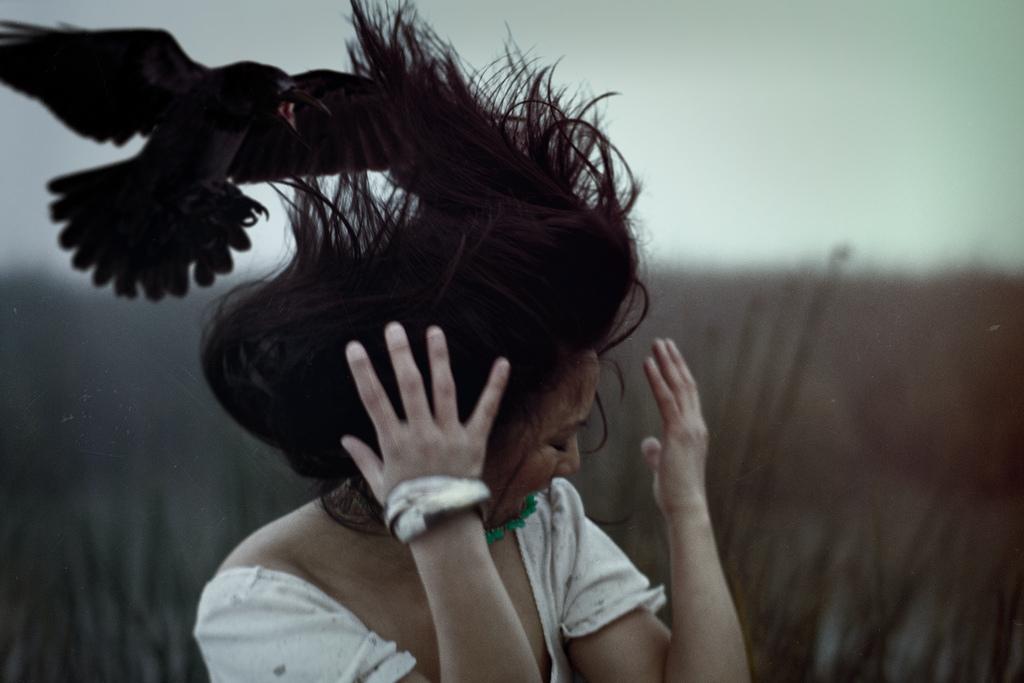 К чему приснилось, что ворона клюет?