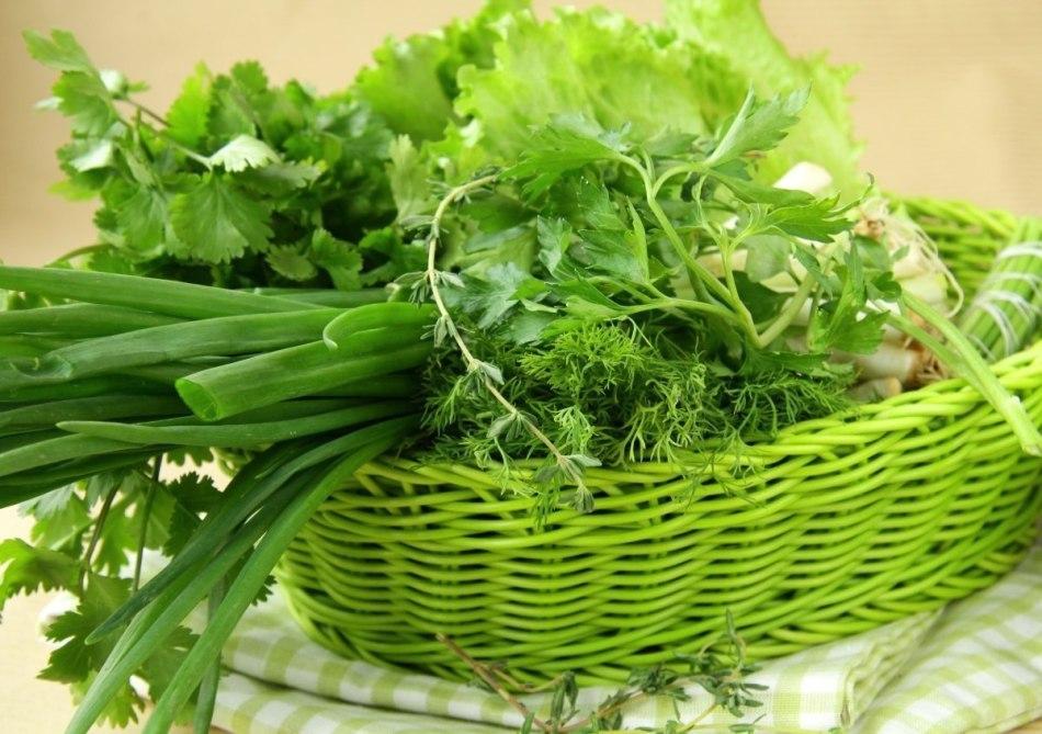 Зелень для куриного супа