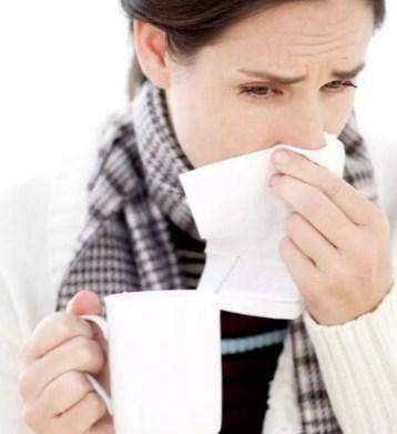 Калина при простуде