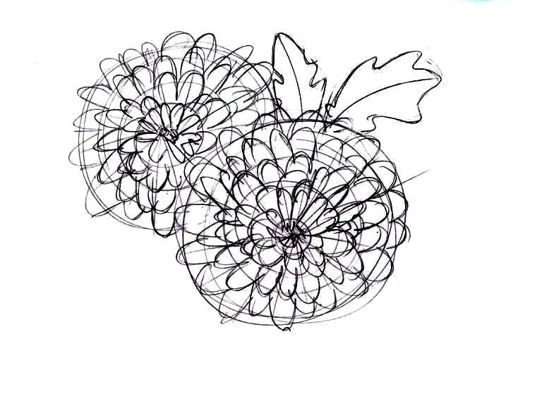 Как нарисовать букет хризантем: рисование лепестков соцветия