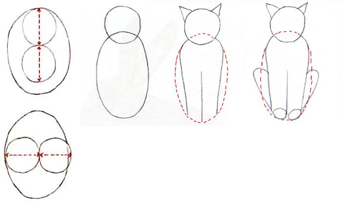 Как нарисовать сидящую кошку: набросок