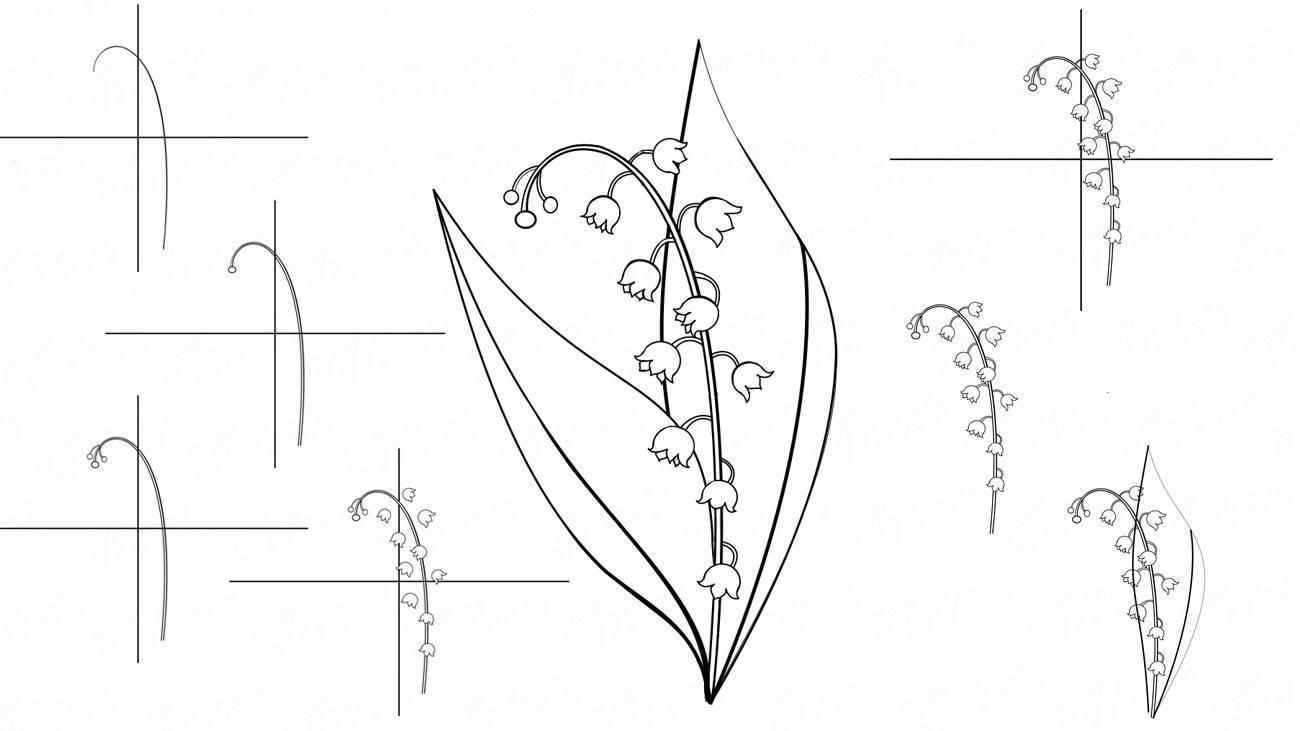 Открыток бабочками, картинки ландыша карандашом