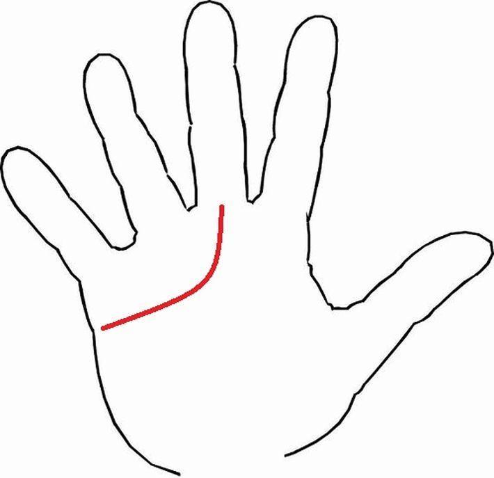 Вот как расположена линия сердца